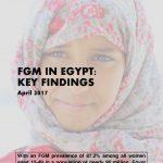 thumbnail of egypt_country_profile_key_findings_v2_(november_2017)_english_(2)