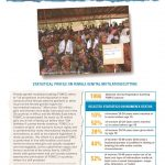 thumbnail of fgmc_burkina_faso_unicef_2013