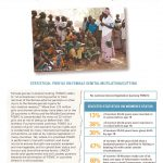 thumbnail of fgmc_cameroon_unicef_2013