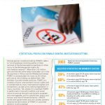 thumbnail of fgmc_chad_unicef_2013