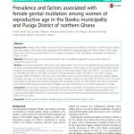 thumbnail of ghana_research_doc_2018