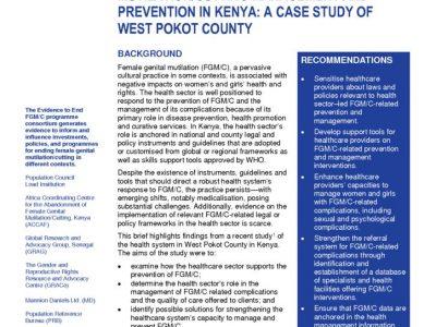 thumbnail of 2020RH_FGMC-DiagnosticAssessmentKenya